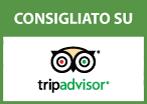 tripadvisor_ok